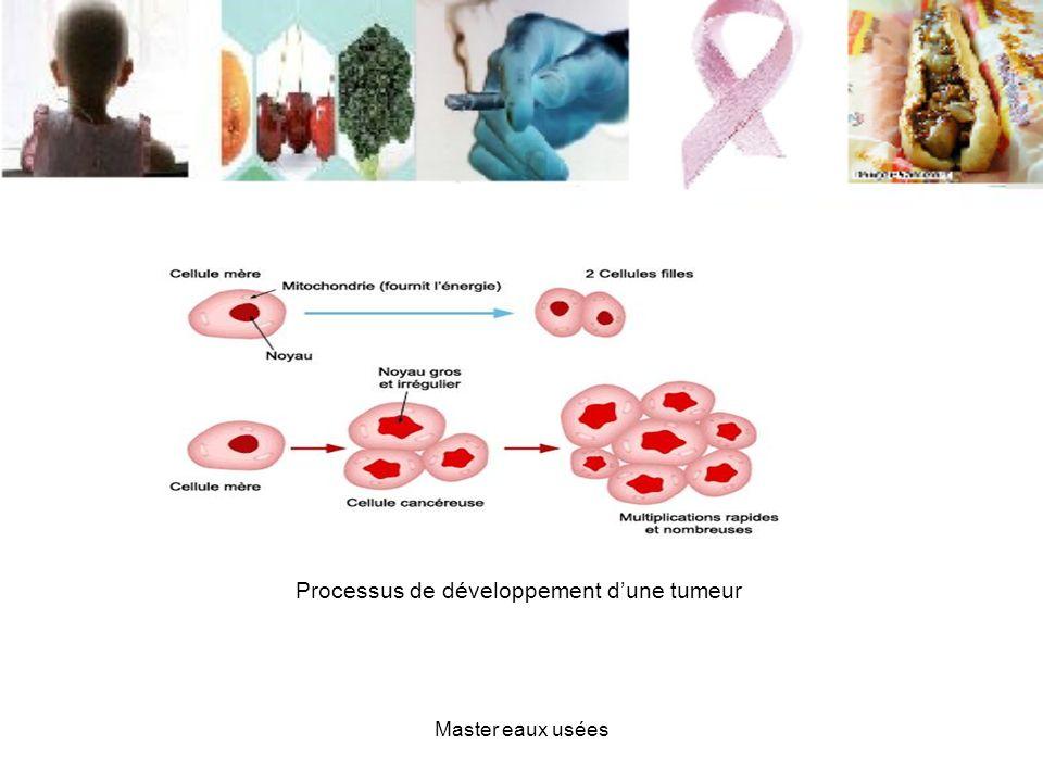 Processus de développement dune tumeur