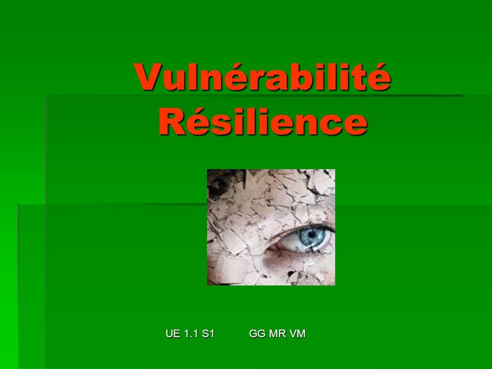 Vulnérabilité Résilience UE 1.1 S1 GG MR VM