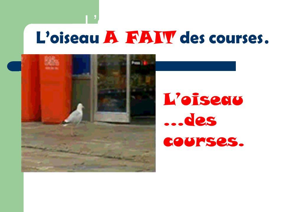 Loiseau … Loiseau A FAIT des courses. Loiseau …des courses.