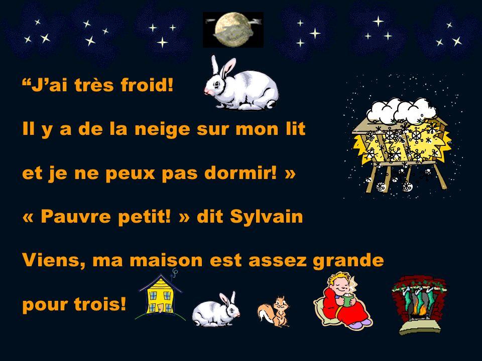 Je ne sais pas! Sylvain ouvre la porte. Cest un lapin!