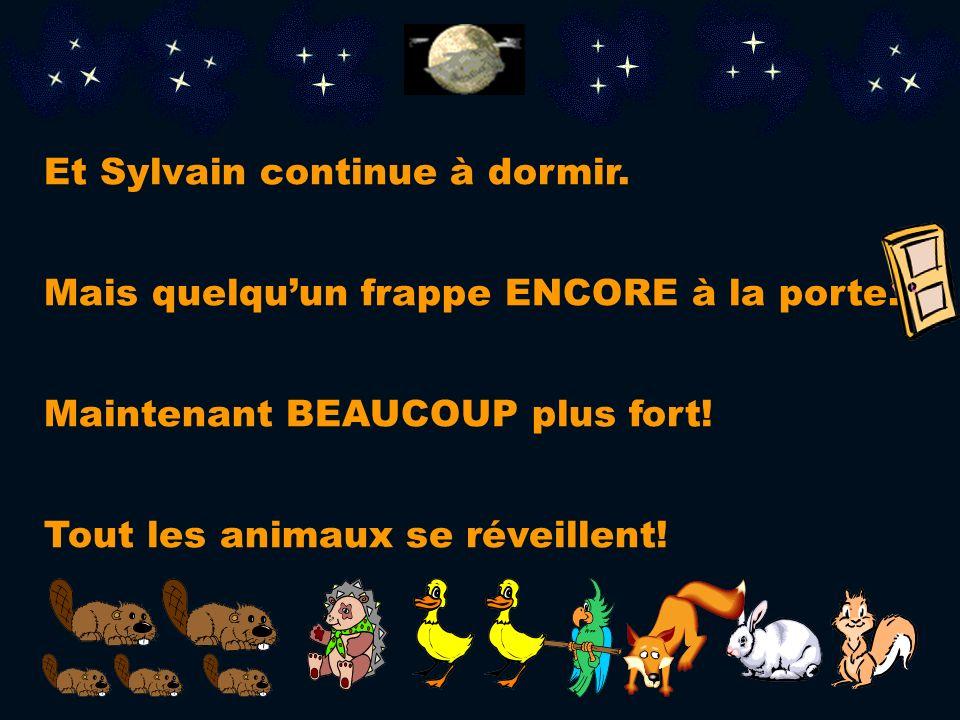 Sylvain dit: Pas possible! Je veux dormir! Il ny a pas de place pour un autre animal ici! Alors, je reste dans mon lit!