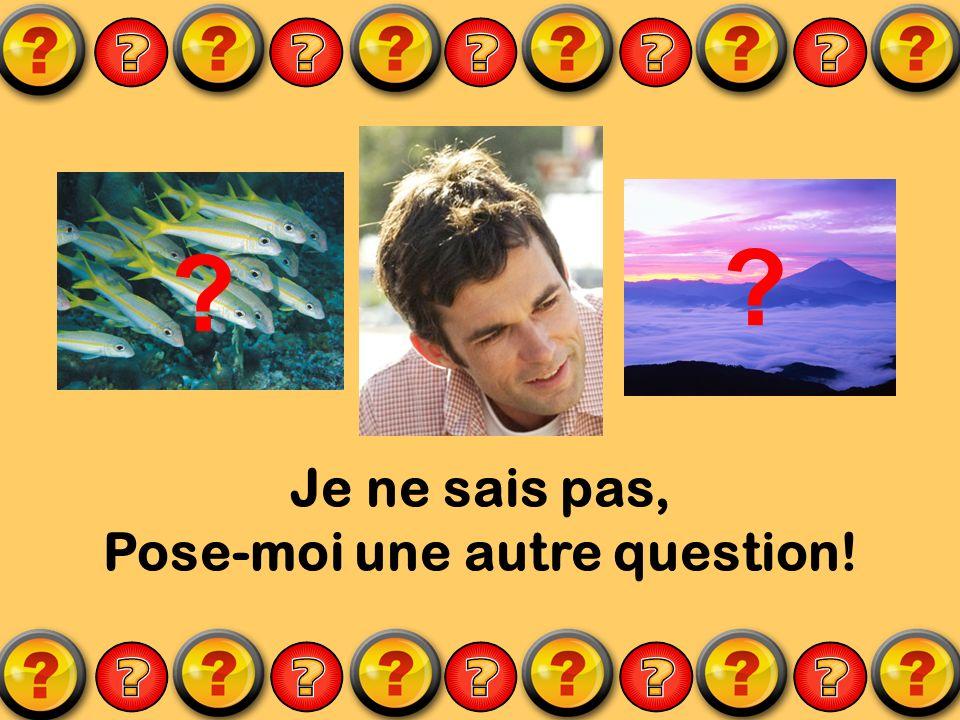 Je ne sais pas, Pose-moi une autre question! ? ?