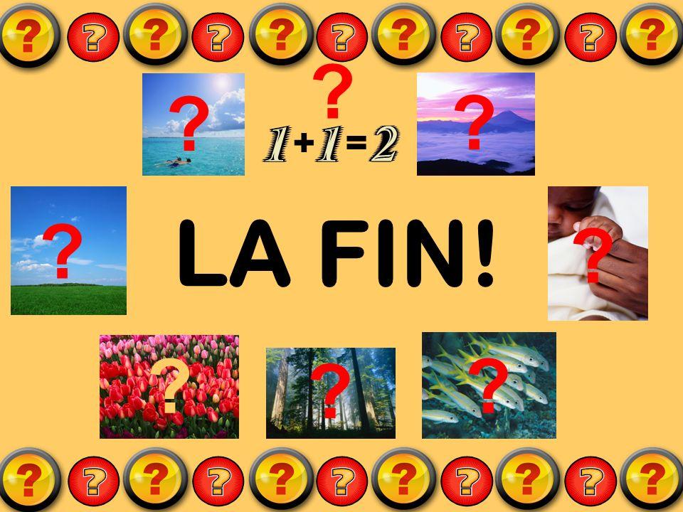LA FIN! ? ? ? += ? ? ?? ? ? ?