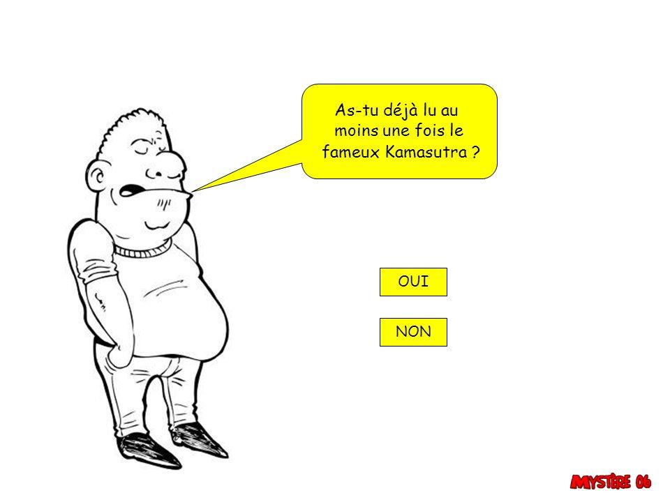 As-tu déjà lu au moins une fois le fameux Kamasutra ? OUI NON