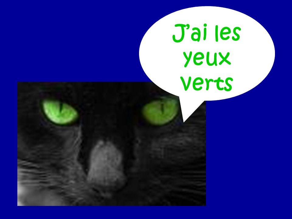 Jai les yeux verts