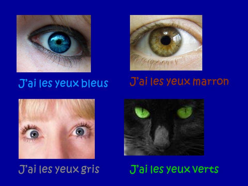 Jai les yeux bleus Jai les yeux marron Jai les yeux grisJai les yeux verts