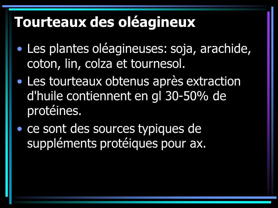 Tourteaux des oléagineux Les plantes oléagineuses: soja, arachide, coton, lin, colza et tournesol. Les tourteaux obtenus après extraction d'huile cont