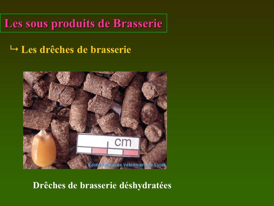 Les sous produits de Brasserie Les drêches de brasserie Drêches de brasserie déshydratées