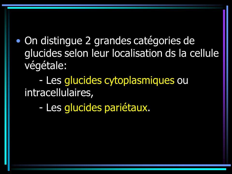 On distingue 2 grandes catégories de glucides selon leur localisation ds la cellule végétale: - Les glucides cytoplasmiques ou intracellulaires, - Les