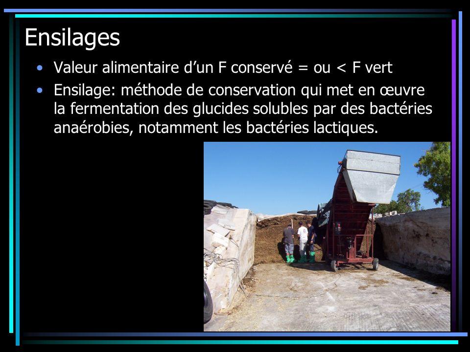 Ensilages Valeur alimentaire dun F conservé = ou < F vert Ensilage: méthode de conservation qui met en œuvre la fermentation des glucides solubles par