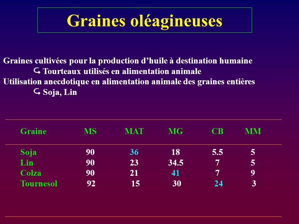 Graines cultivées pour la production dhuile à destination humaine Tourteaux utilisés en alimentation animale Utilisation anecdotique en alimentation a