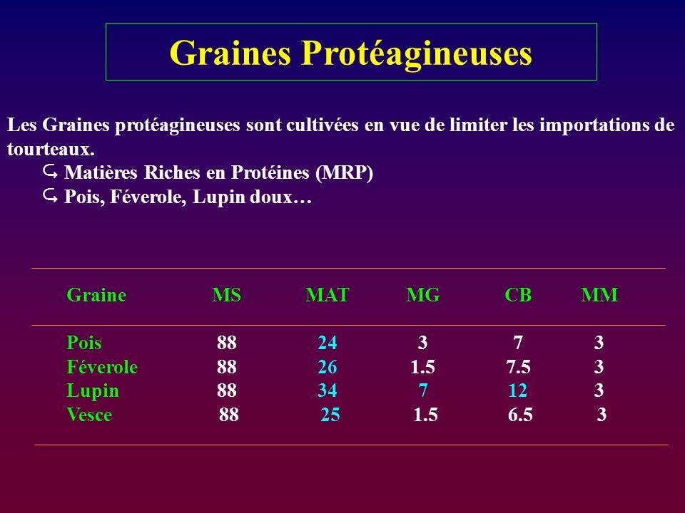 Graines Protéagineuses Les Graines protéagineuses sont cultivées en vue de limiter les importations de tourteaux. Matières Riches en Protéines (MRP) P