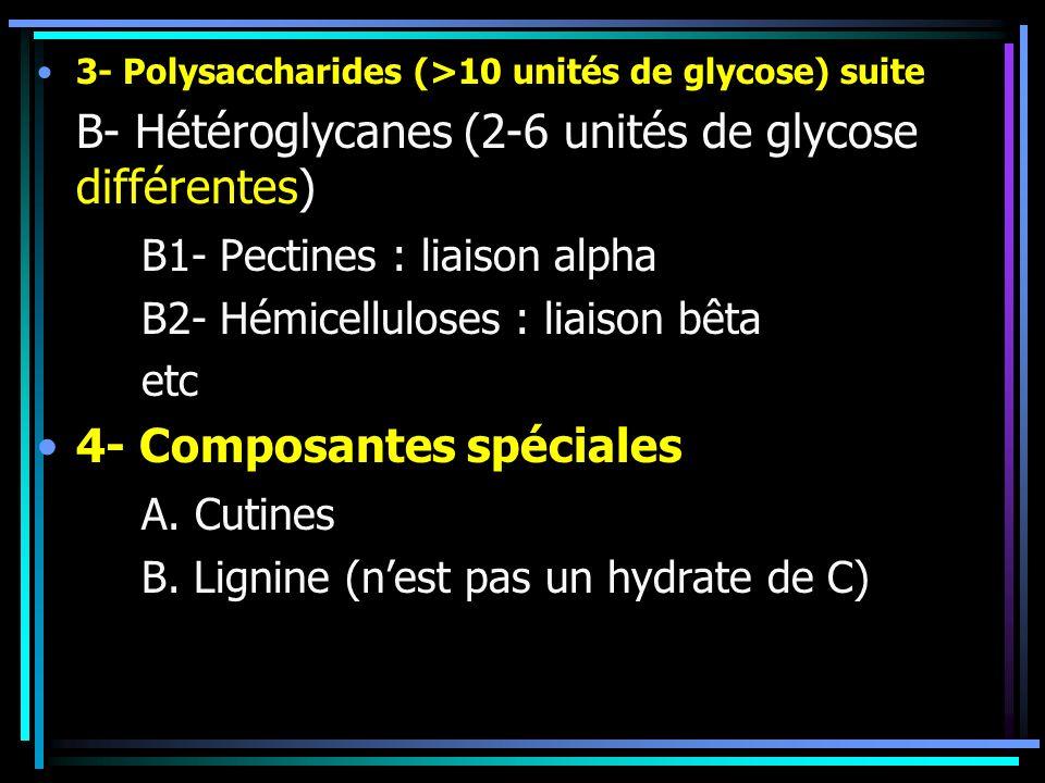 3- Polysaccharides (>10 unités de glycose) suite B- Hétéroglycanes (2-6 unités de glycose différentes) B1- Pectines : liaison alpha B2- Hémicelluloses