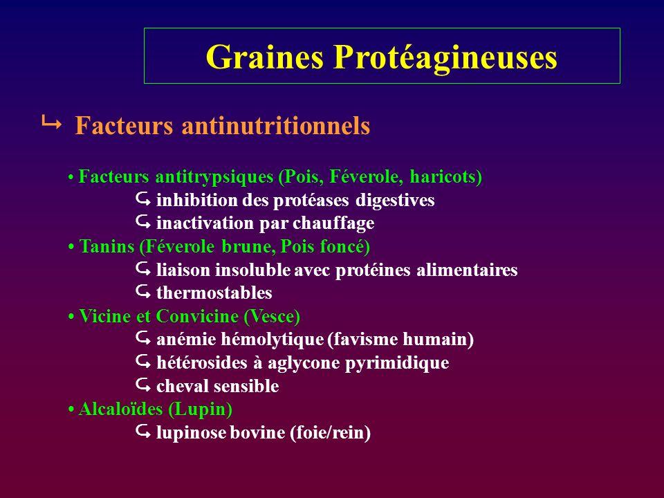 Graines Protéagineuses Facteurs antinutritionnels Facteurs antitrypsiques (Pois, Féverole, haricots) inhibition des protéases digestives inactivation