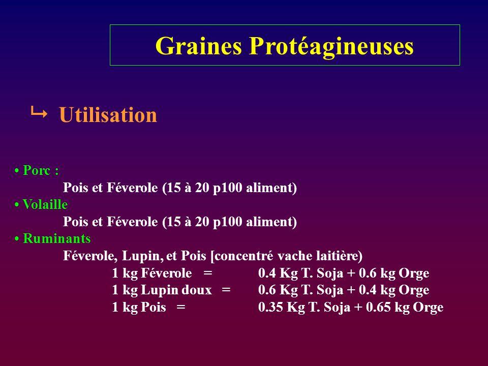 Graines Protéagineuses Utilisation Porc : Pois et Féverole (15 à 20 p100 aliment) Volaille Pois et Féverole (15 à 20 p100 aliment) Ruminants Féverole,