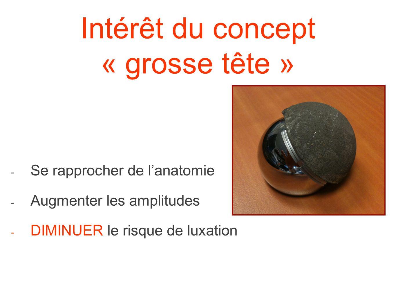 Intérêt du concept « grosse tête » - Se rapprocher de lanatomie - Augmenter les amplitudes - DIMINUER le risque de luxation