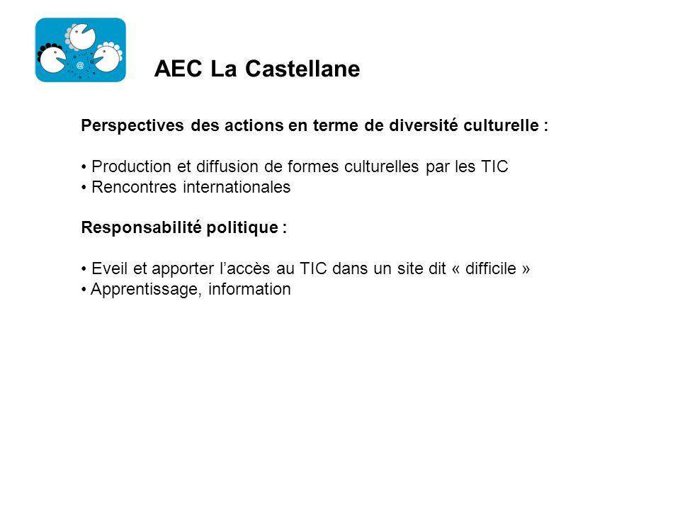 AEC La Castellane Perspectives des actions en terme de diversité culturelle : Production et diffusion de formes culturelles par les TIC Rencontres int