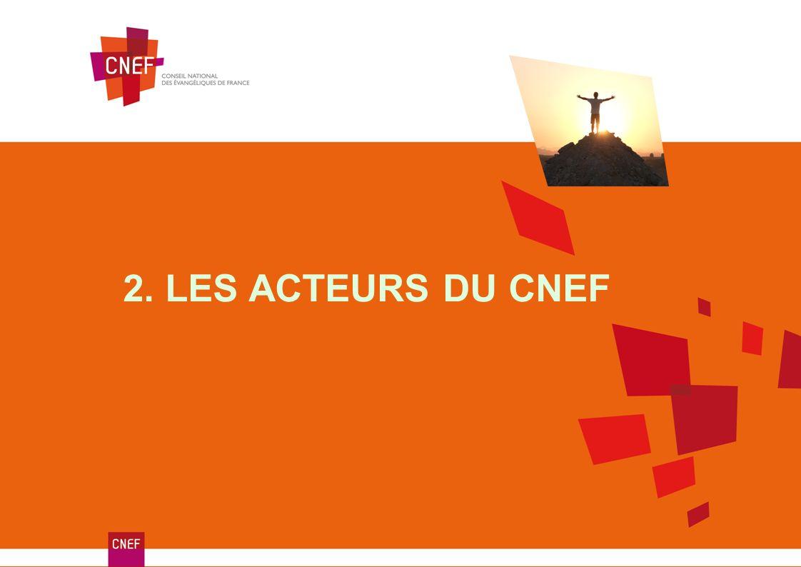 2. LES ACTEURS DU CNEF