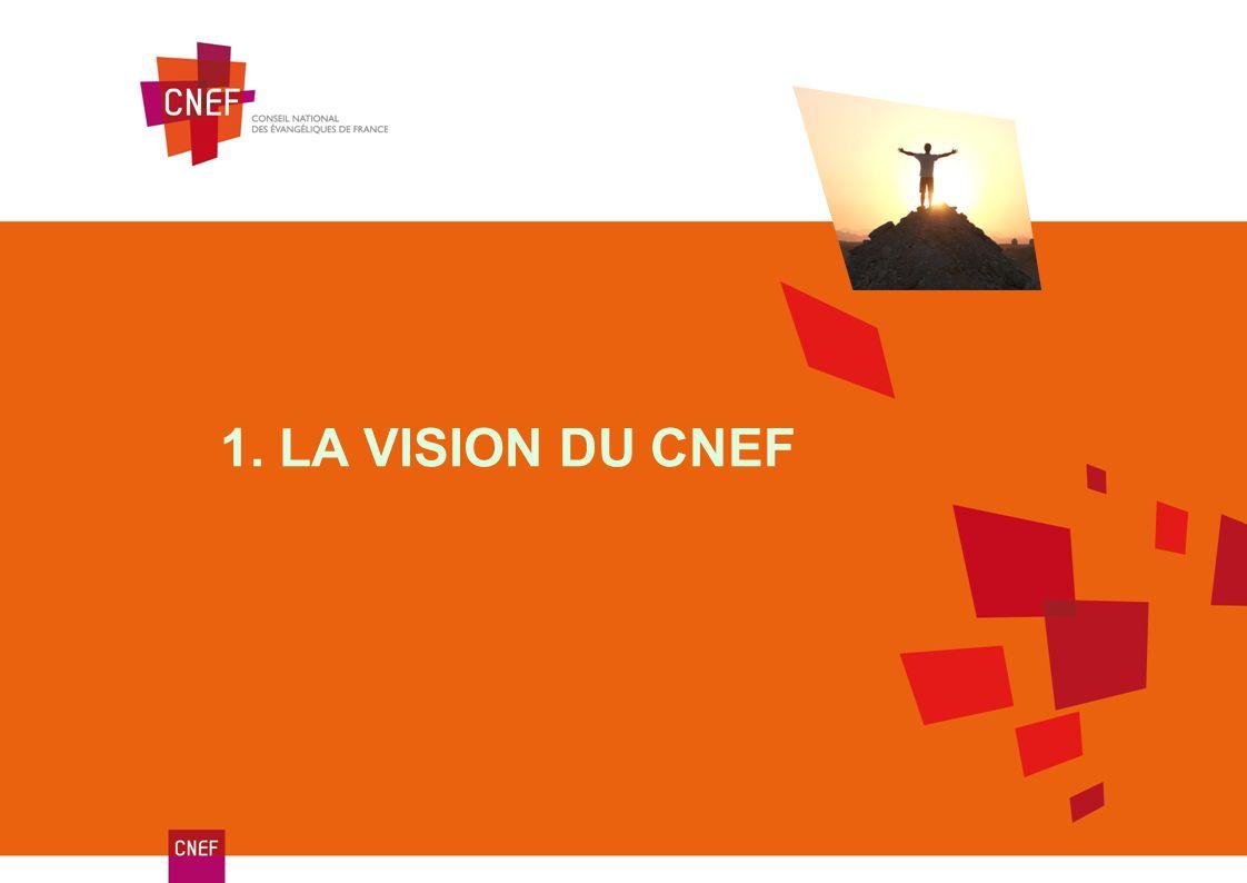 1. LA VISION DU CNEF
