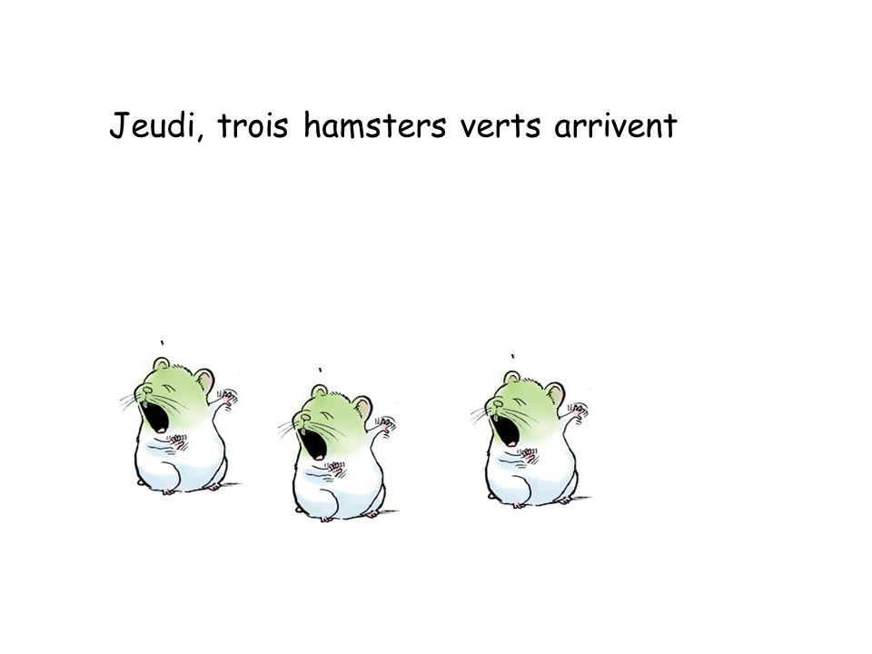 Jeudi, trois hamsters verts arrivent