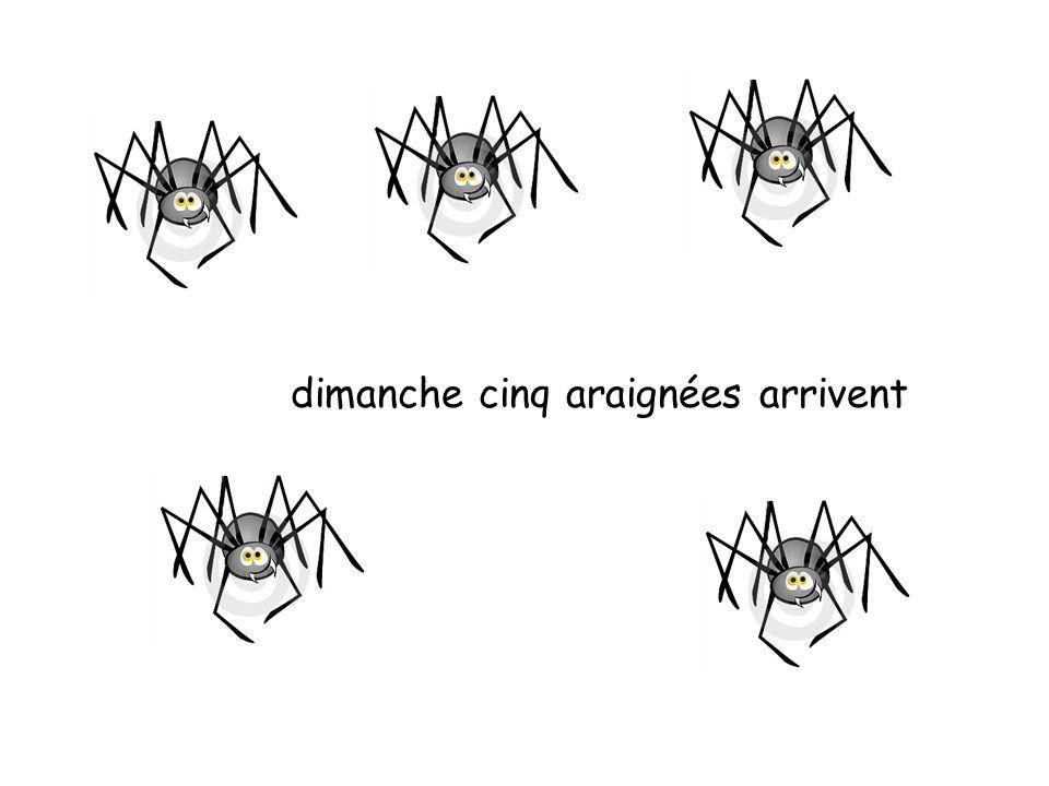 dimanche cinq araignées arrivent
