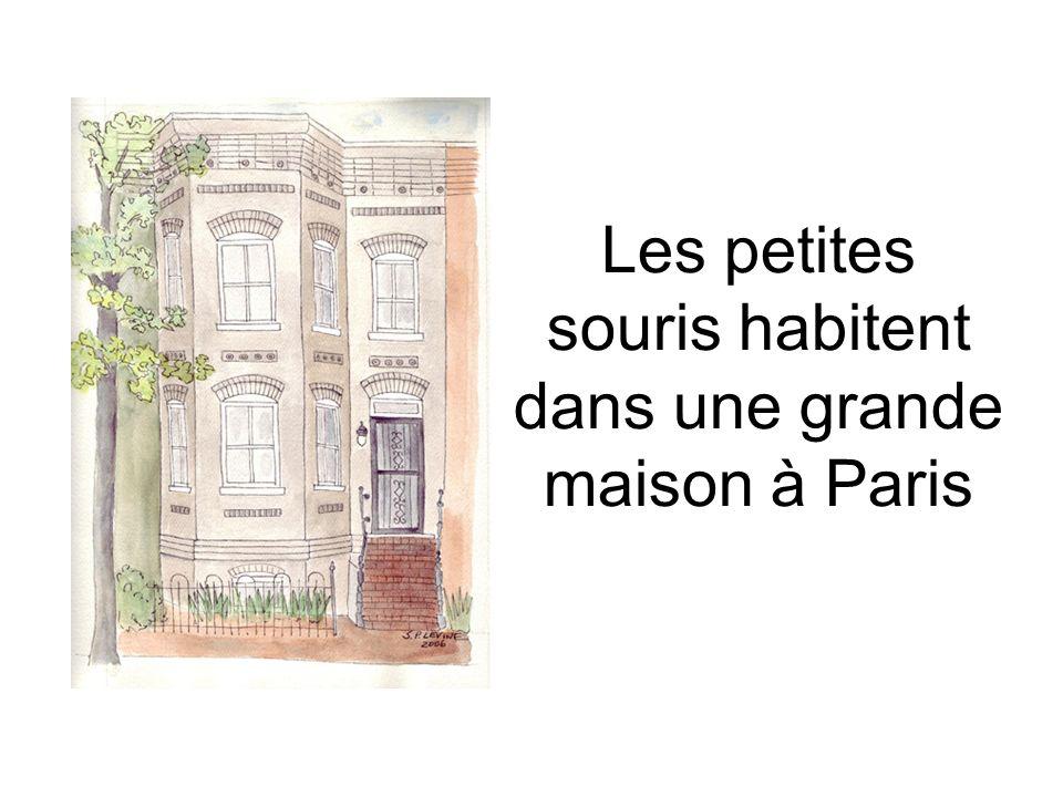 Les petites souris habitent dans une grande maison à Paris