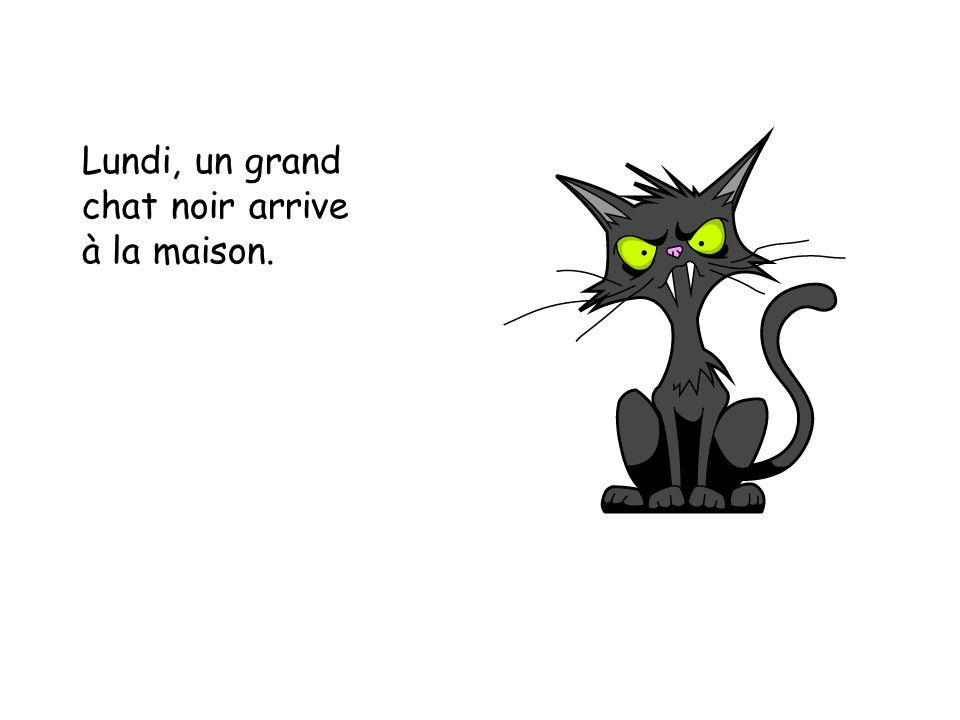 Lundi, un grand chat noir arrive à la maison.