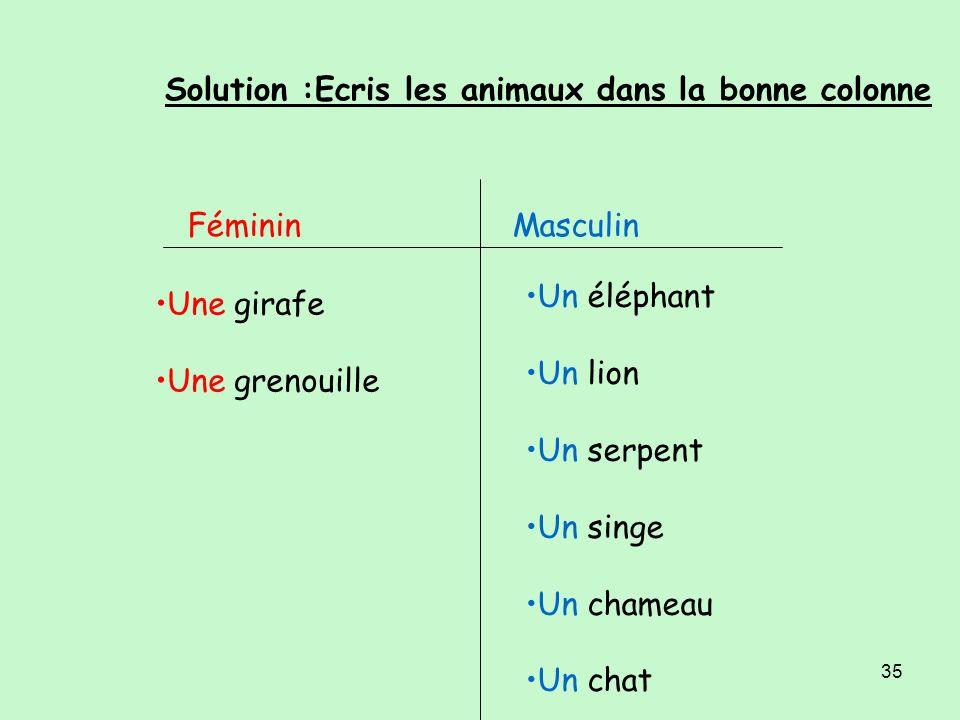 34 Ecris les animaux dans la bonne colonne FémininMasculin un éléphant / une grenouille / un serpent / un lion / un singe / un chameau /une girafe /un