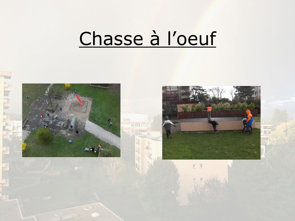 Chasse à loeuf