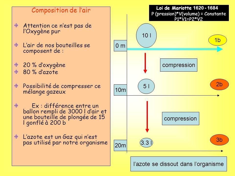 Composition de lair Attention ce nest pas de lOxygène pur Lair de nos bouteilles se composent de : 20 % doxygène 80 % dazote Possibilité de compresser ce mélange gazeux Ex : différence entre un ballon rempli de 3000 l dair et une bouteille de plongée de 15 l gonflé à 200 b Lazote est un Gaz qui nest pas utilisé par notre organisme 10 l 5 l 3.3 l compression 1b 2b 3b 20m 10m 0 m lazote se dissout dans lorganisme Loi de Mariotte 1620 - 1684 ) P (pression)*V(volume) = Constante P1*V1=P2*V2