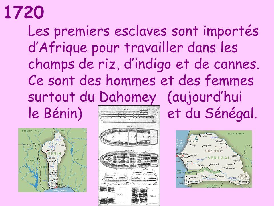 1720 Les premiers esclaves sont importés dAfrique pour travailler dans les champs de riz, dindigo et de cannes. Ce sont des hommes et des femmes surto