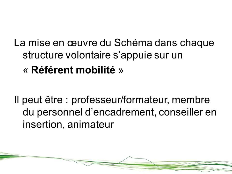 La mise en œuvre du Schéma dans chaque structure volontaire sappuie sur un « Référent mobilité » Il peut être : professeur/formateur, membre du personnel dencadrement, conseiller en insertion, animateur