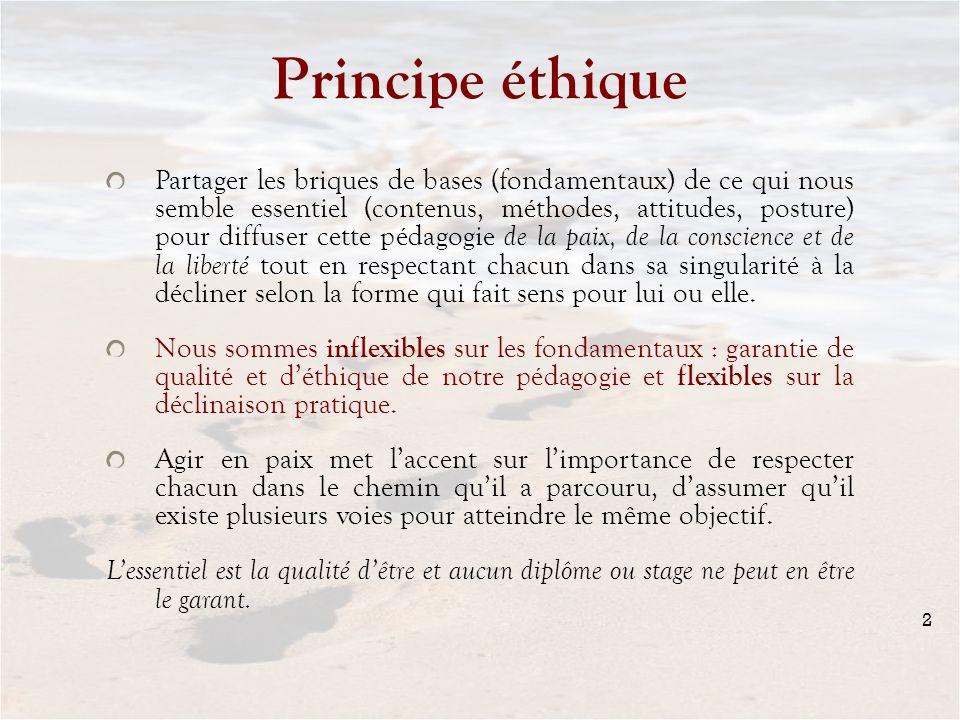 Principe éthique Partager les briques de bases (fondamentaux) de ce qui nous semble essentiel (contenus, méthodes, attitudes, posture) pour diffuser c