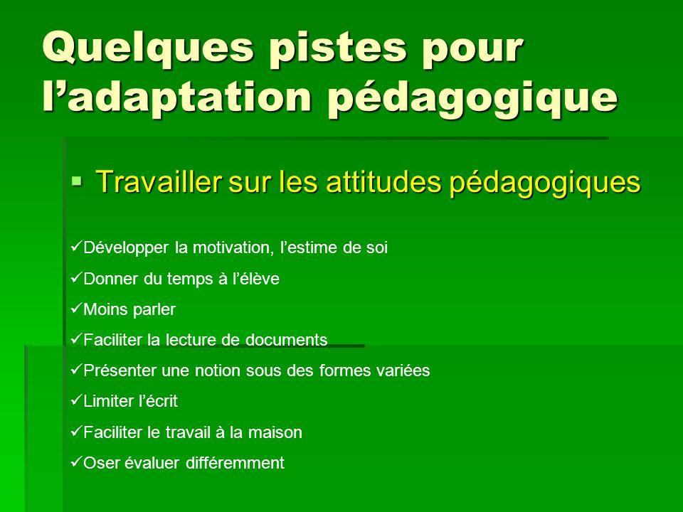 Quelques pistes pour ladaptation pédagogique Travailler sur les attitudes pédagogiques Travailler sur les attitudes pédagogiques Développer la motivat