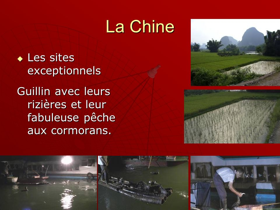 La Chine Les sites exceptionnels Les sites exceptionnels Guillin avec leurs rizières et leur fabuleuse pêche aux cormorans.