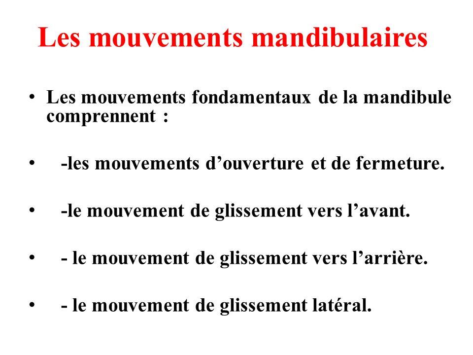 Les mouvements mandibulaires Les mouvements fondamentaux de la mandibule comprennent : -les mouvements douverture et de fermeture. -le mouvement de gl