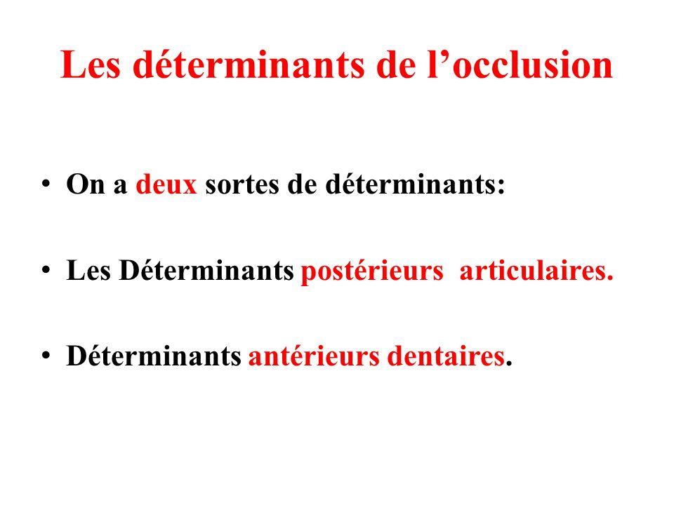 Les déterminants de locclusion On a deux sortes de déterminants: Les Déterminants postérieurs articulaires. Déterminants antérieurs dentaires.