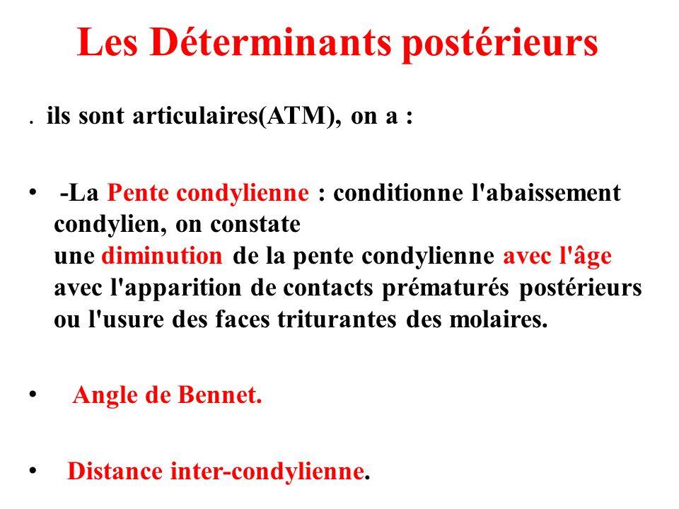 Les Déterminants postérieurs. ils sont articulaires(ATM), on a : -La Pente condylienne : conditionne l'abaissement condylien, on constate une diminuti
