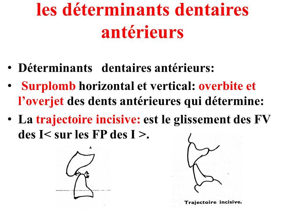 les déterminants dentaires antérieurs Déterminants dentaires antérieurs: Surplomb horizontal et vertical: overbite et loverjet des dents antérieures q