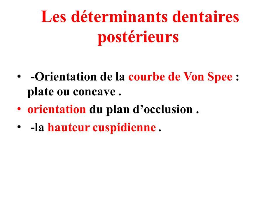Les déterminants dentaires postérieurs -Orientation de la courbe de Von Spee : plate ou concave. orientation du plan docclusion. -la hauteur cuspidien