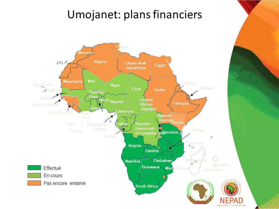 Umojanet: mise en œuvre du réseau