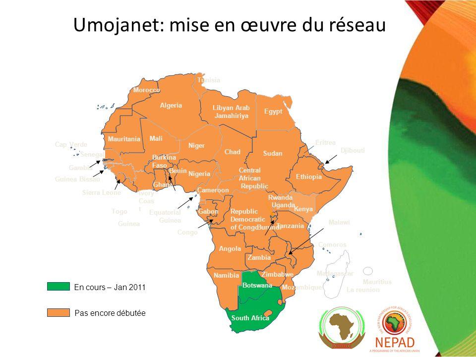 Extension du cadre politique et réglementaire Afin quun maximum de pays aient accès au Protocole de Kigali, la Commission e-Afrique du NEPAD a lancé en 2010 une campagne de présentation et dexplication aux parties prenantes de lensemble des régions du continent.