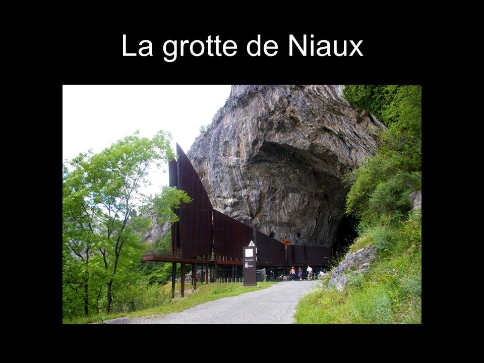 Quelques animaux de la grotte de Niaux Un bouquetin