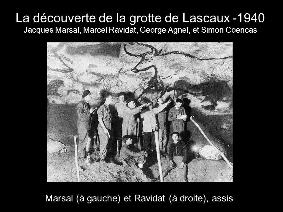 Des taureaux et des cerfs Quelques animaux de la grotte de Lascaux