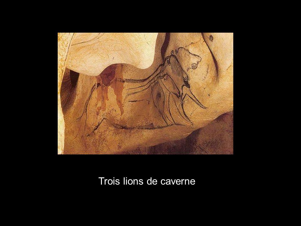 La grotte Chauvet Signature de lartiste ?