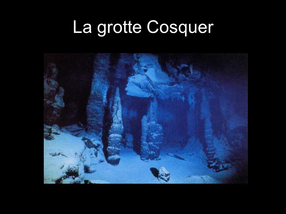 La grotte Cosquer - une grotte sous-marine La grotte nest accessible que par un long tunnel submergé, le niveau de la mer sétant élévé depuis la dernière glaciation.