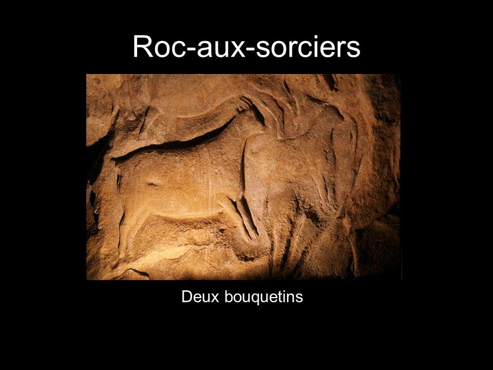 Un bison La grotte de Font-de-Gaume