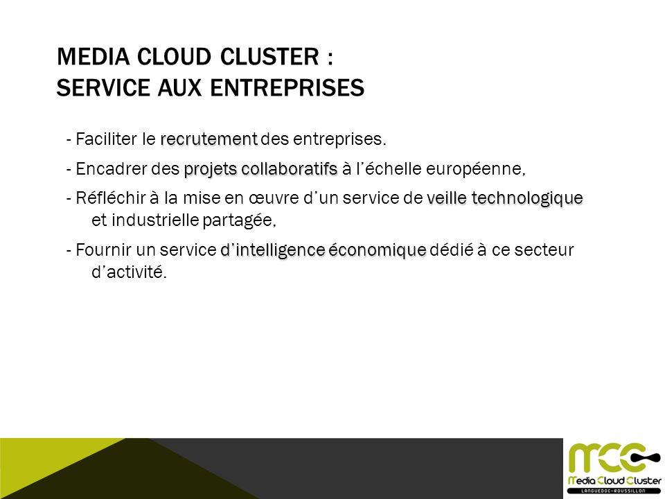 MEDIA CLOUD CLUSTER : SERVICE AUX ENTREPRISES recrutement - Faciliter le recrutement des entreprises. projets collaboratifs - Encadrer des projets col