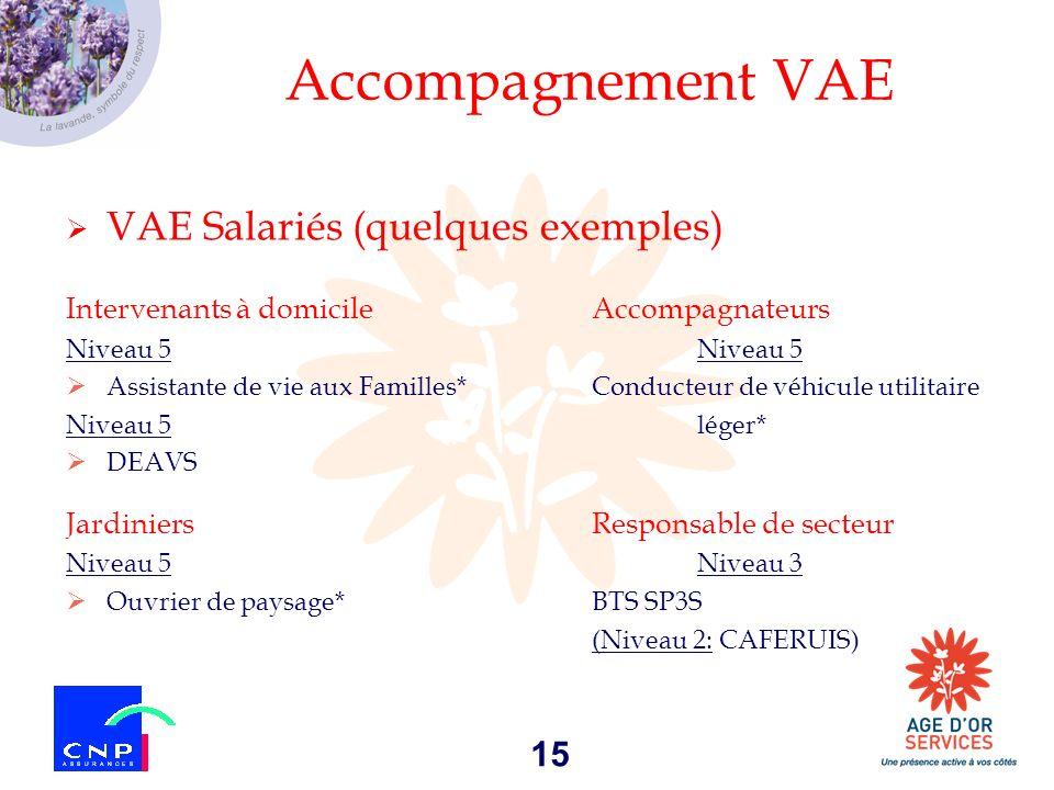 15 Accompagnement VAE VAE Salariés (quelques exemples) Intervenants à domicileAccompagnateursNiveau 5 Assistante de vie aux Familles*Conducteur de véh