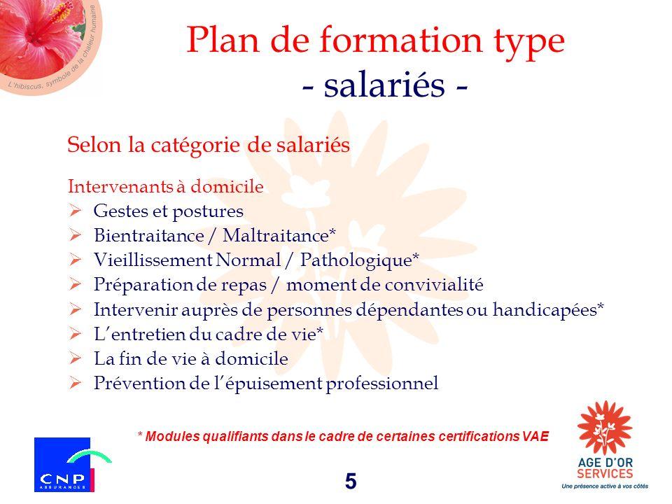 5 Plan de formation type - salariés - Selon la catégorie de salariés Intervenants à domicile Gestes et postures Bientraitance / Maltraitance* Vieillis